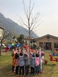 adottiamo-un-albero-2019-02