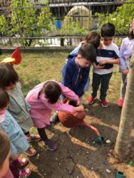 adottiamo-un-albero-2019-03