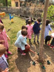 adottiamo-un-albero-2019-04