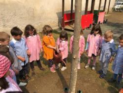 adottiamo-un-albero-2019-05 (1)