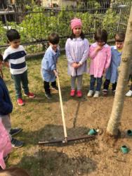 adottiamo-un-albero-2019-06 (1) (1)