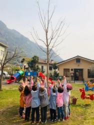 adottiamo-un-albero-2019-07
