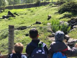 2018/2019-Gita Introd Parc animalier