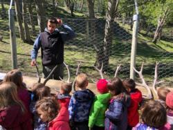 Gita-parco-animalier-Introd-12