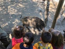Gita-parco-animalier-Introd-14