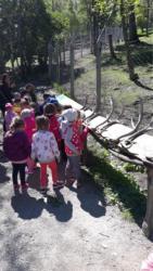 Gita-parco-animalier-Introd-23